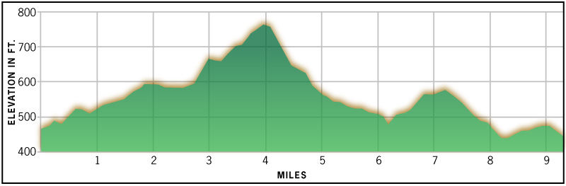 Course Elevation